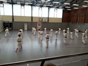 Kyffhäuser-Karate-Camp 2015